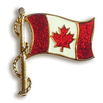 ENAMELED FLAG PIN