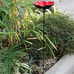 POPPY BIRD FEEDER WITH FREE POPPY SEED PACKET